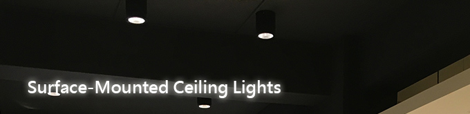 surface-mounted ceiling lights
